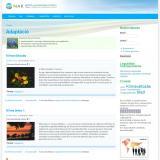 NAK Fórum fórumtémák