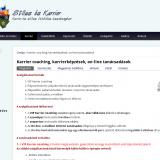 Stíl-Konzult Kft honlapja - Karrier stílus
